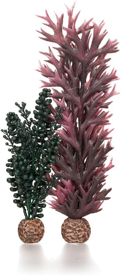 biOrb Zeeparels en kelp donkergroen S
